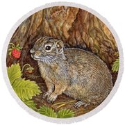 Eagle Creek Wild Strawberry Ground Squirrel Round Beach Towel by Ditz