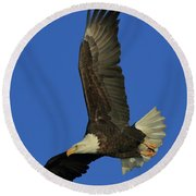Round Beach Towel featuring the photograph Eagle Diving by Coby Cooper