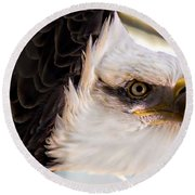 Eagle Eye Round Beach Towel by Sherman Perry