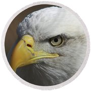 Round Beach Towel featuring the photograph Eagle Eye by Steve Stuller