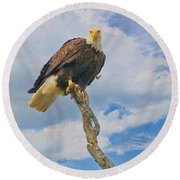 Eagle Eyes Round Beach Towel