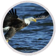 Round Beach Towel featuring the photograph Eagle Fish Grab by Coby Cooper