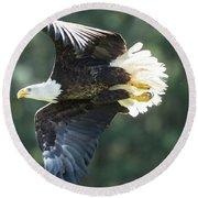 Eagle Flying 3005 Round Beach Towel
