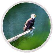 Eagle In Lake Round Beach Towel