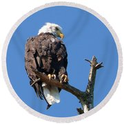 Eagle Lookout Round Beach Towel