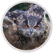 Round Beach Towel featuring the photograph Eagle Owl Close Up by William Selander