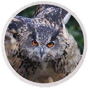 Eagle Owl Close Up Round Beach Towel