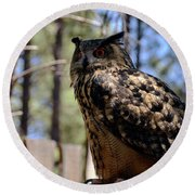 Round Beach Towel featuring the photograph Eagle Owl by Debby Pueschel