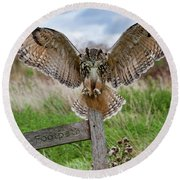 Eagle Owl On Signpost Round Beach Towel