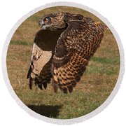 Eagle Owl On The Hunt 2 Round Beach Towel