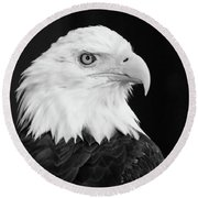 Eagle Portrait Special  Round Beach Towel by Coby Cooper