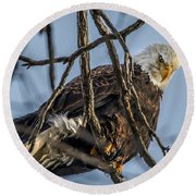 Eagle Power Round Beach Towel