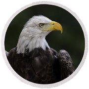 Eagle Profile 2 Round Beach Towel