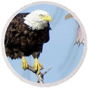 Eagle Reflection Round Beach Towel