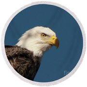 Round Beach Towel featuring the photograph Eagle by Rod Wiens
