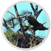 Round Beach Towel featuring the photograph Eagle Series The Nest by Deborah Benoit