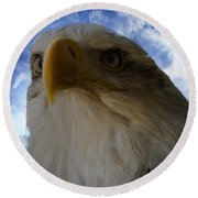 Eagle Round Beach Towel by Sherman Perry
