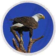 Eagle The Female Round Beach Towel
