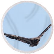 Eagle Watch 2017 Round Beach Towel