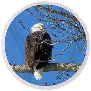 Eagle Watch Round Beach Towel by Sue Stefanowicz