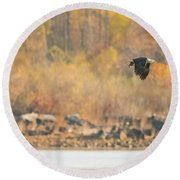 Eagle With Fish And Foliage Round Beach Towel by Jeff at JSJ Photography