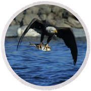 Round Beach Towel featuring the photograph Eagle With Fish Flying by Coby Cooper