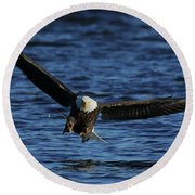 Round Beach Towel featuring the photograph Eagle With Talons Up by Coby Cooper