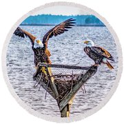 Round Beach Towel featuring the photograph Eagles In Blackwater Refuge by Nick Zelinsky
