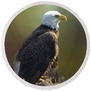 Eagles Rest Ministries Round Beach Towel