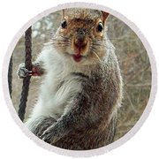 Earl The Squirrel Round Beach Towel
