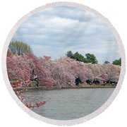 Early Arrival Of The Japanese Cherry Blossoms 2016 Round Beach Towel by Emmy Marie Vickers