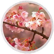 Round Beach Towel featuring the photograph Early Cherry Blossoms by Rachel Mirror