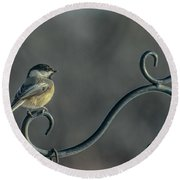 Early Morning At The Feeder Round Beach Towel