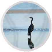 Early Morning Heron Round Beach Towel