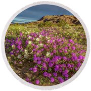 Early Morning Light Super Bloom Round Beach Towel