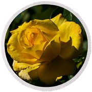 Early Morning Rose Round Beach Towel