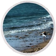 Early Morning Stroll Round Beach Towel by Stephen Melia
