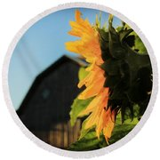 Round Beach Towel featuring the photograph Early One Morning by Chris Berry
