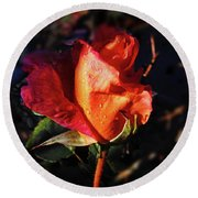 Early Rose Round Beach Towel by Mark Blauhoefer