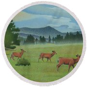 Early Spring Evergreen Round Beach Towel