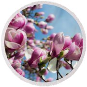 Early Spring Magnolia Round Beach Towel