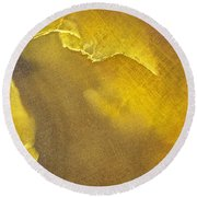 Earth Portrait 001-120 Round Beach Towel