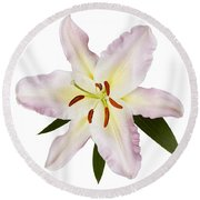 Easter Lilly 1 Round Beach Towel