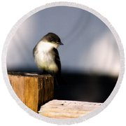 Eastern Phoebe Round Beach Towel by Lana Trussell