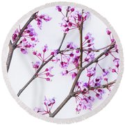Eastern Redbud Round Beach Towel by Elena Nosyreva