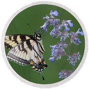 Eastern Tiger Swallowtail Profile Round Beach Towel