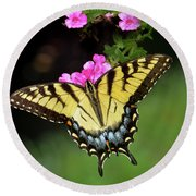 Eastern Tiger Swallowtail Round Beach Towel by Amy Porter