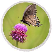 Round Beach Towel featuring the photograph Eastern Tiger Swallowtail Dark Form  by Ricky L Jones