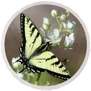 Eastern Tiger Swallowtail Female Round Beach Towel