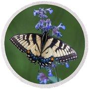 Eastern Tiger Swallowtail Wingspan Round Beach Towel